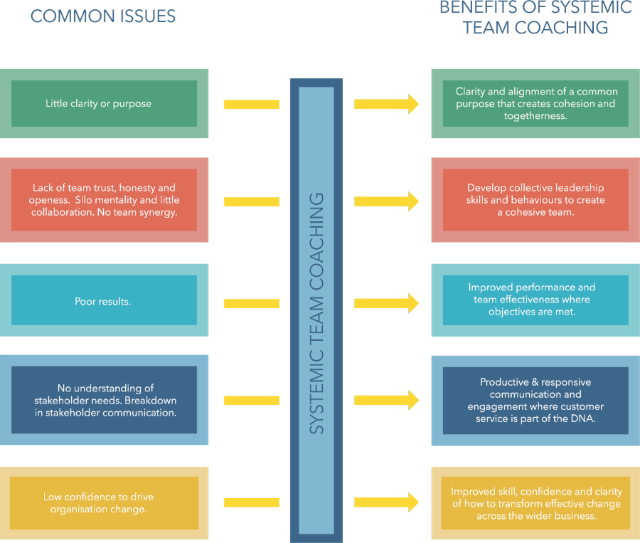Systemic team coaching model